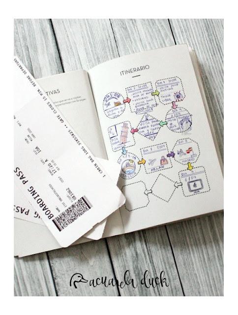 Organizador de viaje