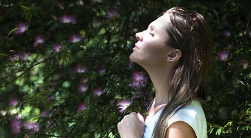 Obat Herbal Sesak Nafas