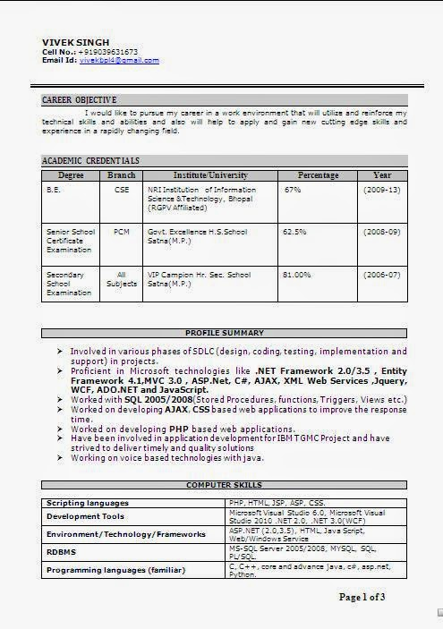 cse final year resume