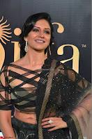Vimala Raman in Designer Choli and Saree at IIFA Utsavam Awards 2017  Day 2    HD Exclusive Pics 12.JPG