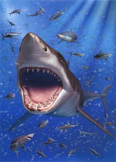 『3Dアートミュージアム アクアリウム:ホホジロザメ』