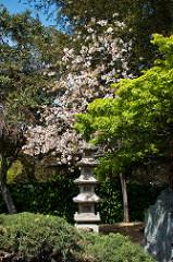 Japanese Friendship Garden per Anna Fox a Flickr