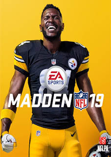 Madden NFL 19 PC download