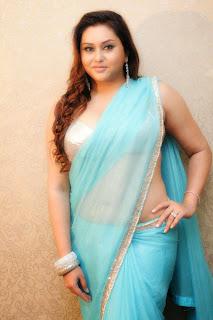 Namitha-hot-saree-photo
