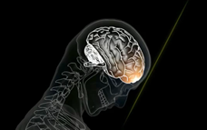 Does our brain produce any heat while processing information?