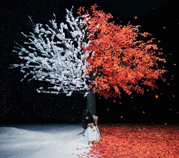 Aimer – everlasting snow Lyrics 歌詞 PV