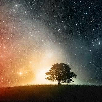 A longa viagem a um pequeno planeta hostil, Becky Chambers