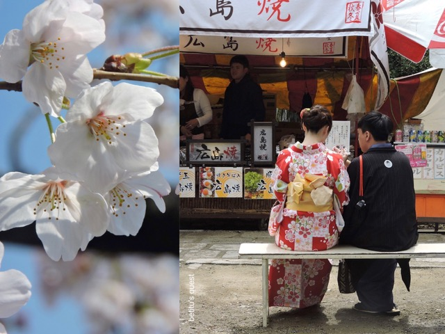 Sakura season in Kyoto by betitu's quest