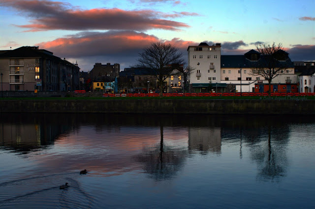 Sunset rerlections and ducks at Claddagh quay, Galway