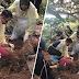 Mayat lelaki ditanam separuh badan di kebun durian