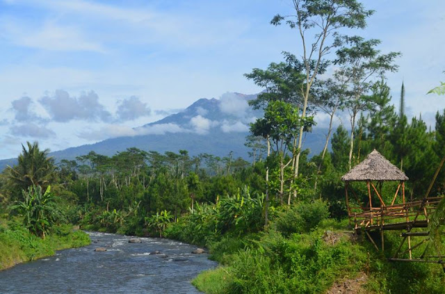 Wisata JJL Jambewangi Jungle Lodge, Kecamatan Sempu, Banyuwangi.