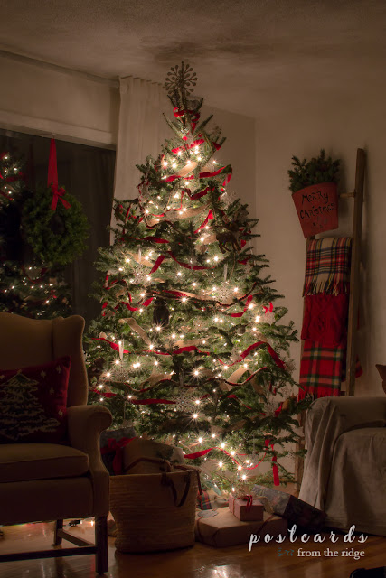 Christmas tree with red ribbon at night