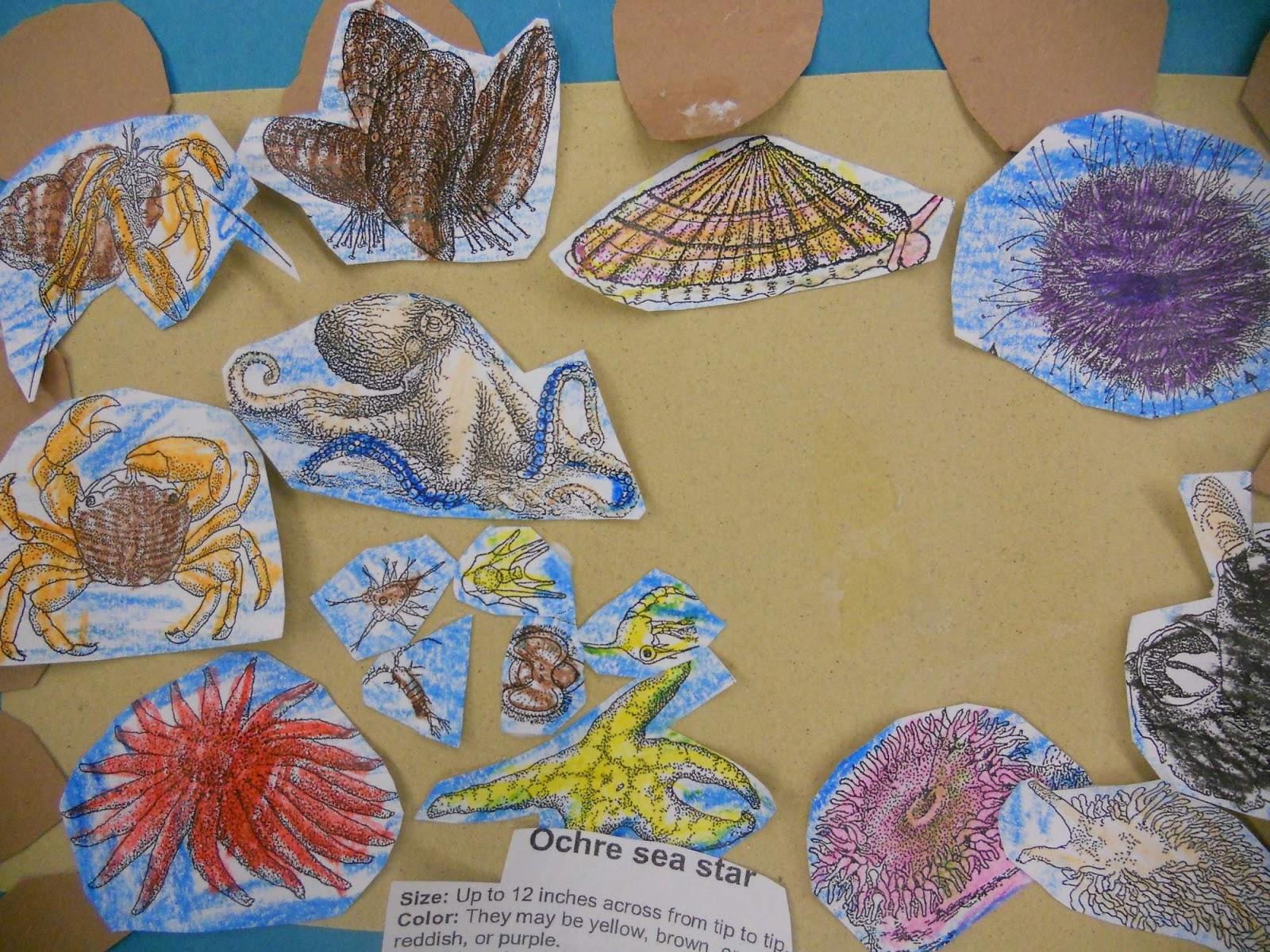 Jnelson S First Grade Blog April
