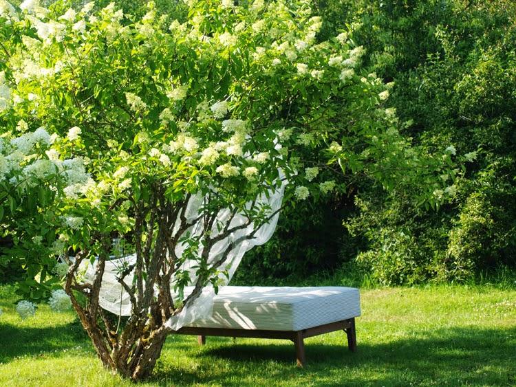 Seng i haven til afslapning og middagslure