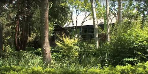 Madoo Garden