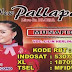New Pallapa Lilin Herlina Perdana Record 2016