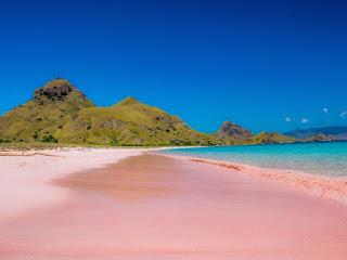 pink beach lombok, labuan bajo