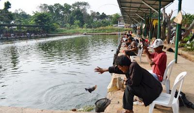 Peluang Bisnis Usaha Kolam Pemancingan dengan Analisa Lengkap