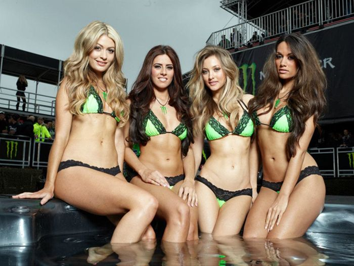 Sexy monster energy girls remarkable
