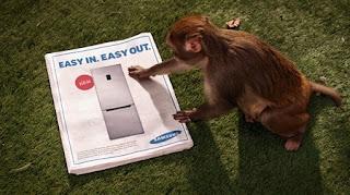 Frigorífico Samsung y mono ladrón