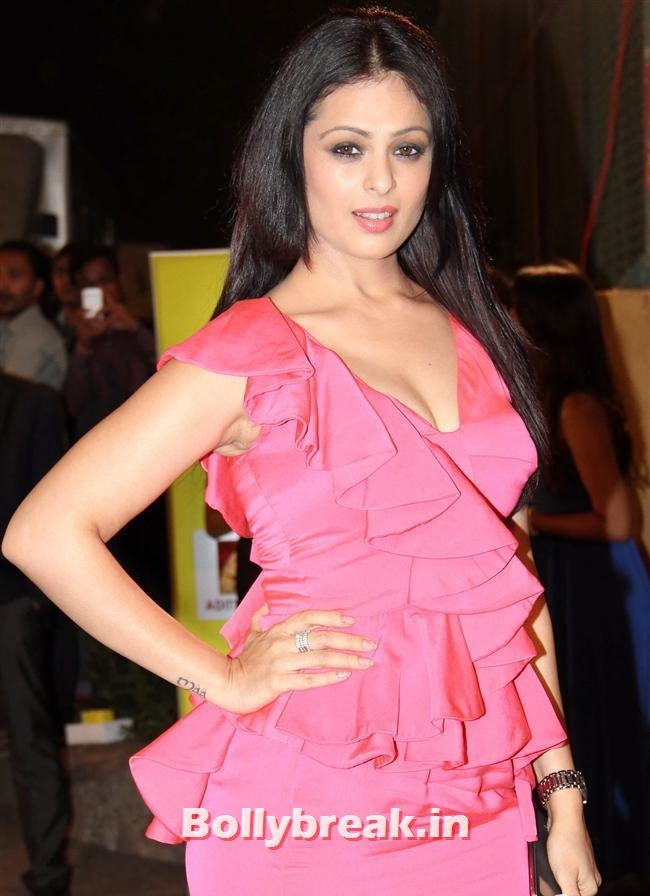 Anjana Sukhani, Filmfare Awards 2014 Red carpet Images