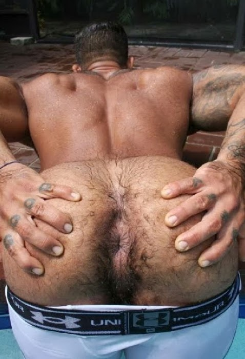 bisexual-xxx-men-with-hairy-butt-holes-signs-and
