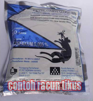 cara membasmi tikus hama jangkrik di sangkar jangkrik untuk pemula Order WA 0858-5314-7511 cara membasmi tikus hama jangkrik di sangkar jangkrik untuk pemula