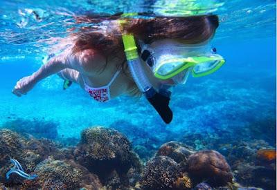 tour pulau menjangan bali ,cara ke pulau menjangan bali dari banyuwangi ,biaya snorkeling di pulau menjangan bali