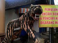 Macan Lucu Ponorogo Siap Jaga Kampung dari Serbuan Pencari Kodok