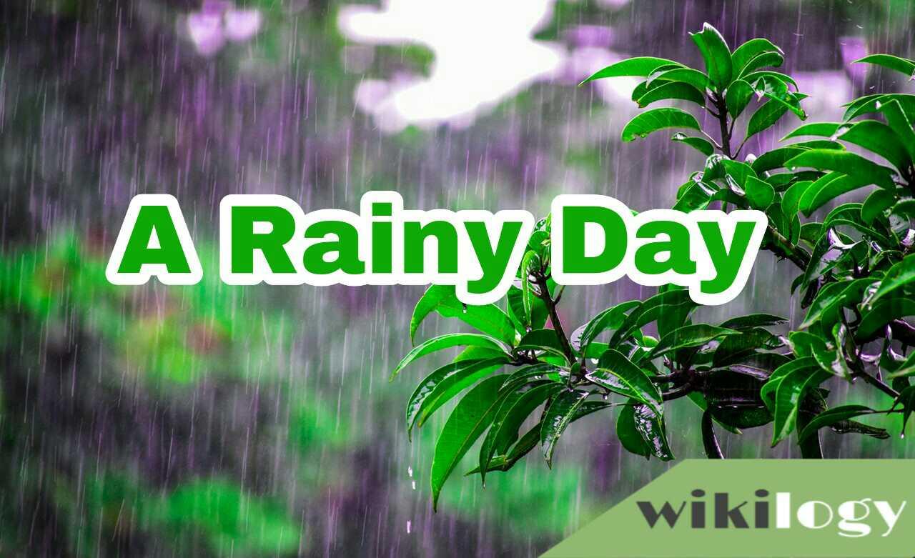 A Rainy Day Paragraph, A Rainy Day I Experienced