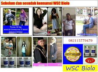 Obat Diet Untuk Obesitas Wsc Biolo