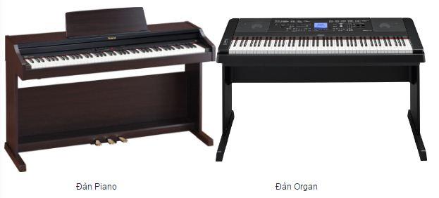 5 điểm khác nhau rõ rệt giữa đàn Organ và đàn Piano