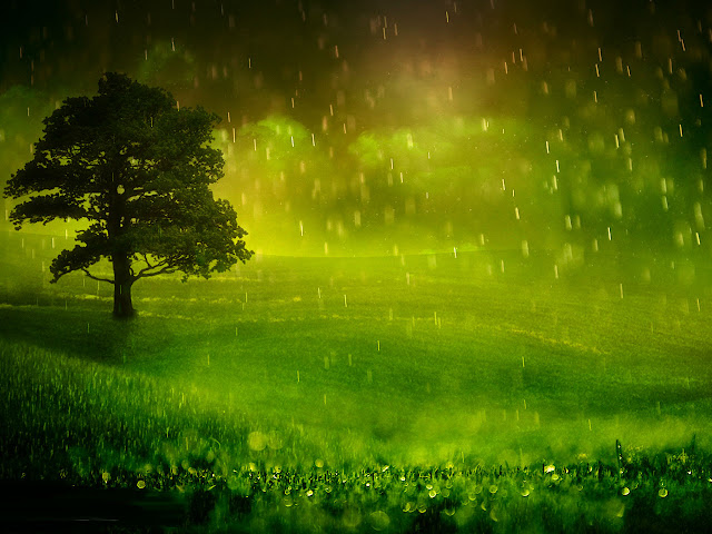 Rainy Day Wallpapers HD Backgrounds Free Download