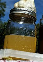Garlic Honey Cold and Flu Immune Booster Syrup