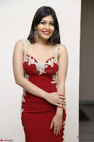 Rachana Smit in Red Deep neck Sleeveless Gown at Idem Deyyam music launch ~ Celebrities Exclusive Galleries 052.JPG