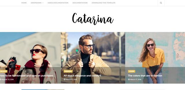 Catarina Minimal Responsive Blogger Templates
