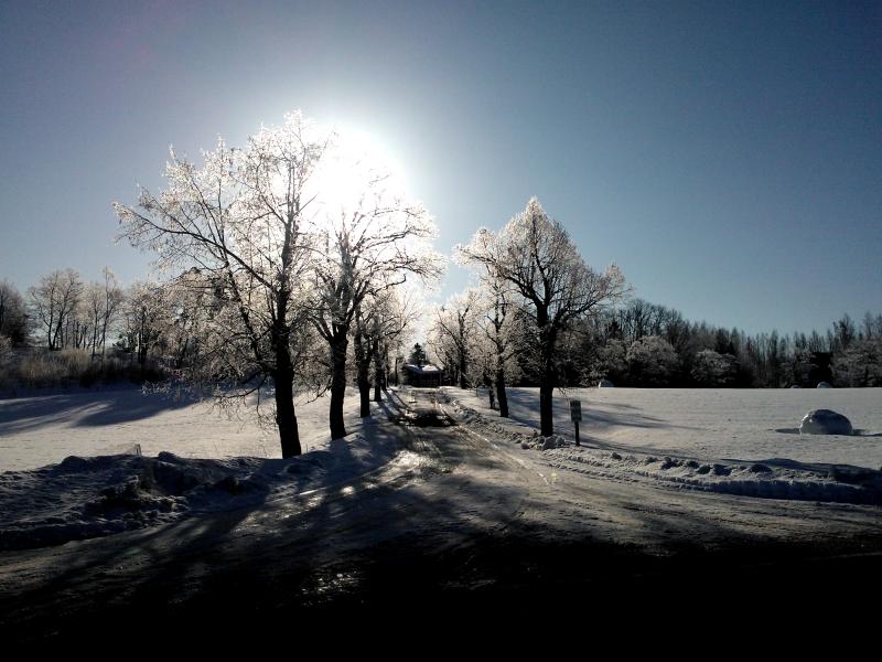 Torihinnat Kuopio