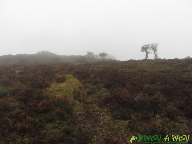 Camino al Gargalois desde el Prao Roque