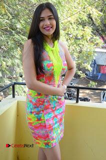 Telugu Actress Prasanna Stills in Short Dress at Inkenti Nuvve Cheppu Press Meet Stills  0102.JPG