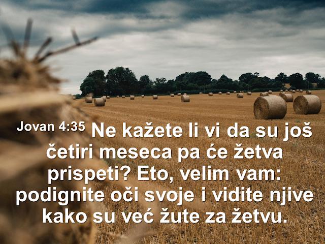 Harvest John 4:35