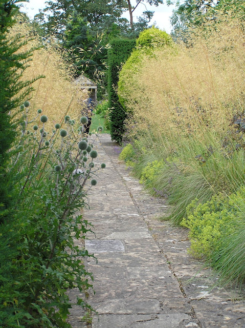 kamienna ścieżka wśród traw