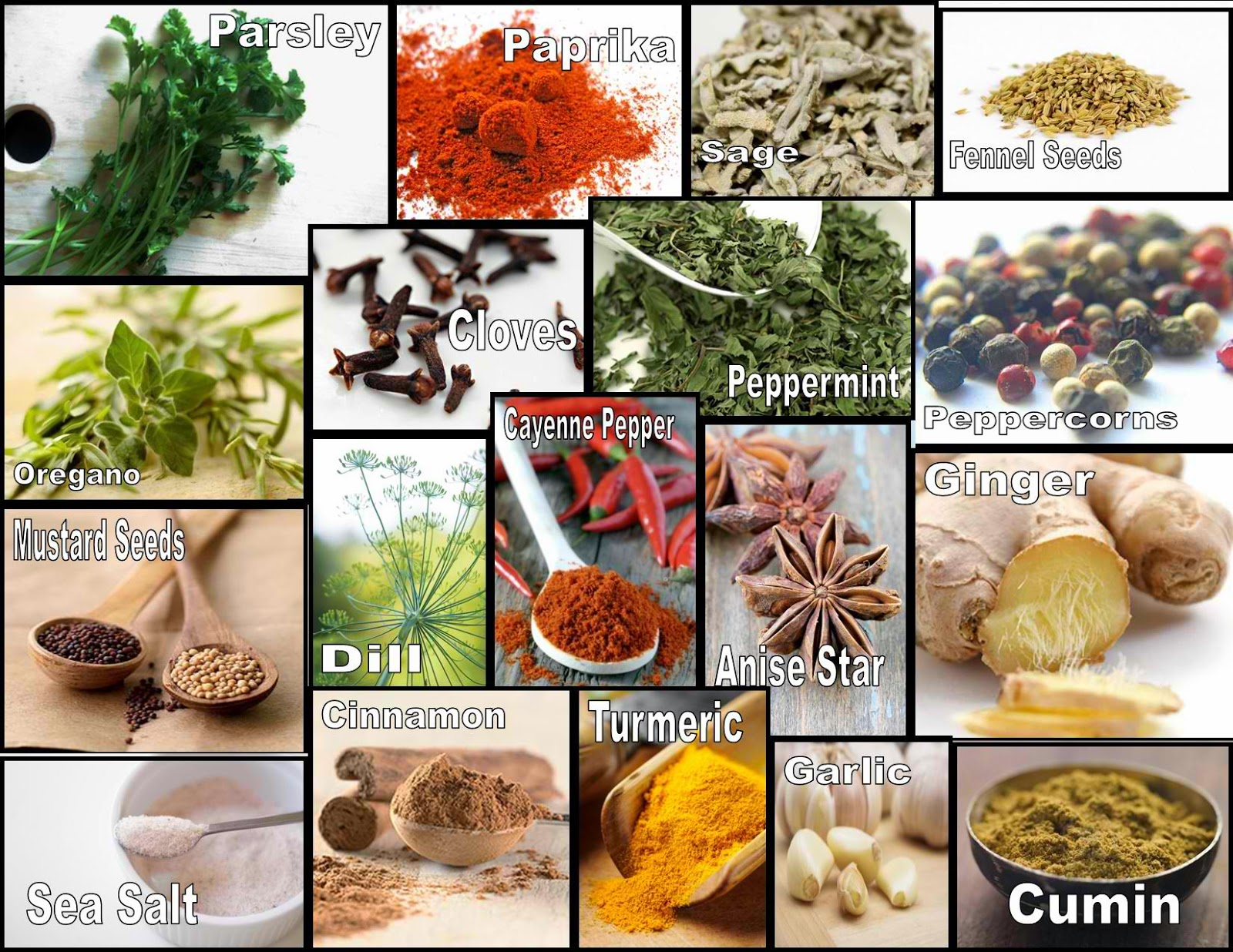Culinary Physics List Of Cooking Spices With Pictures