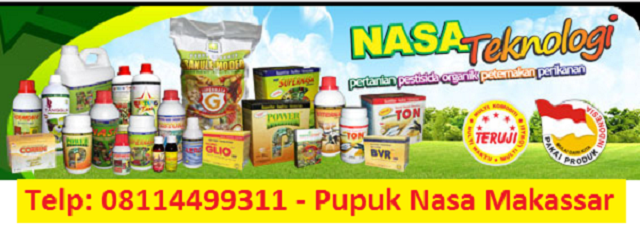 distributor nasa makassar
