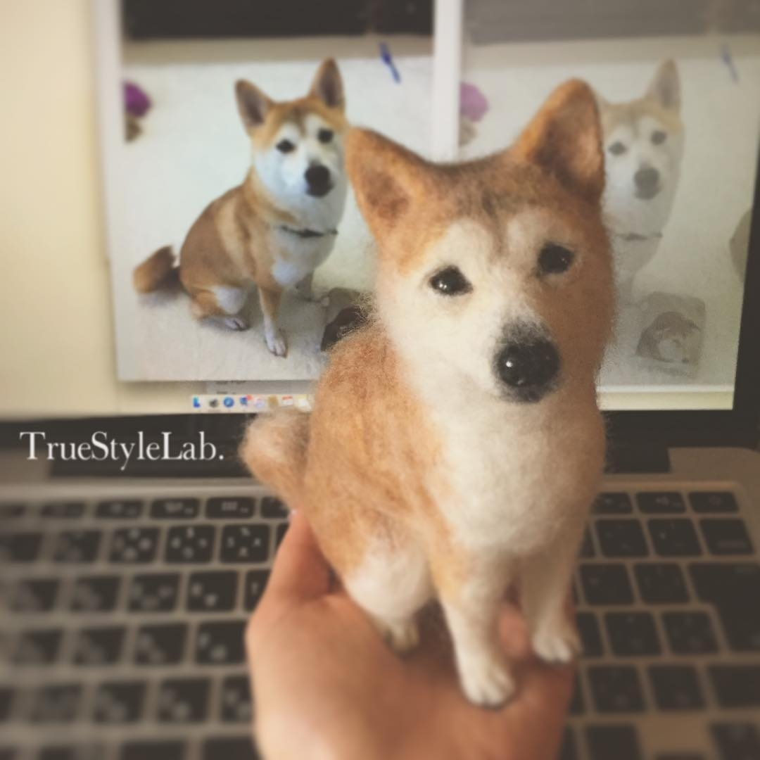 13-Shiba-Dog-Terumi-Ohta-Giving-Life-to-Woollen-Animal-Sculptures-www-designstack-co