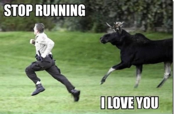 Funny I Love You Memes 10