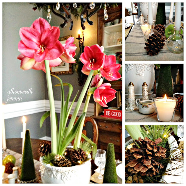 dining-new-year's-centerpiece-pinecones-amaryllis