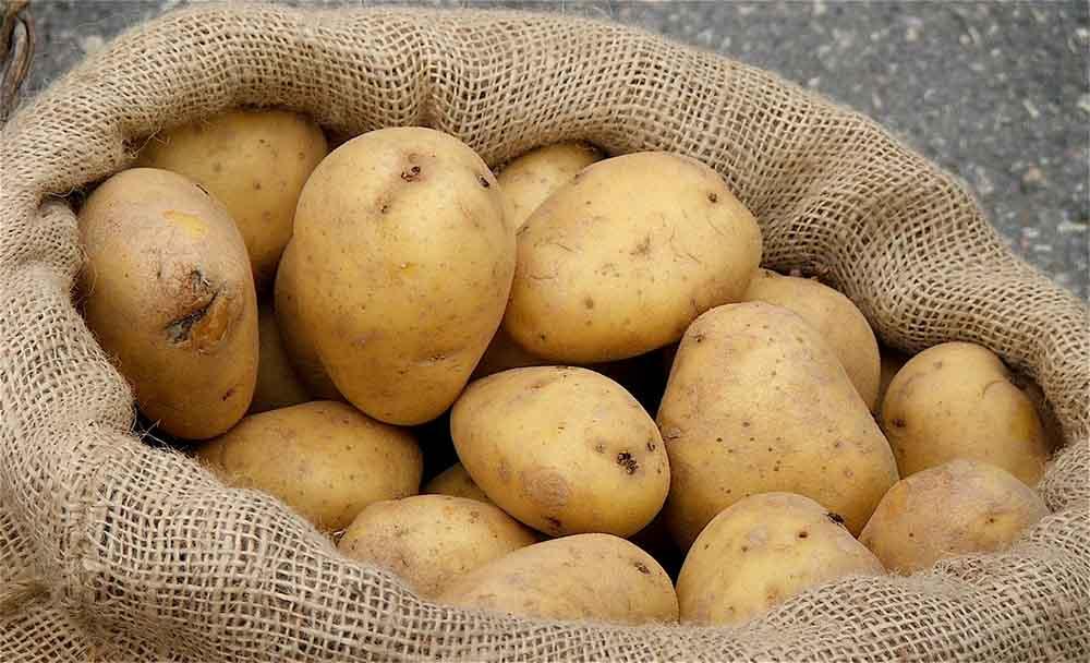 فوائد البطاطس(البطاطا)..10 فوائد عن البطاطا Potatoes