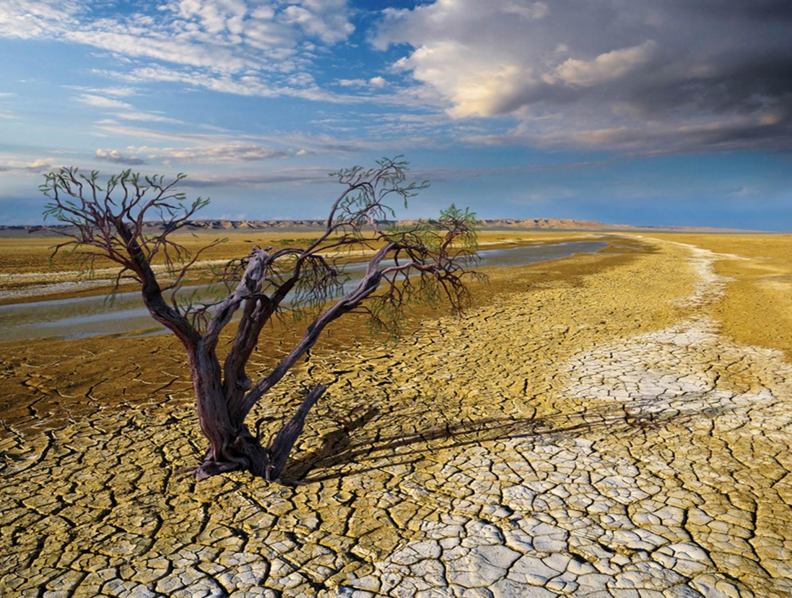 المنطقة العربية مهددة مائياً بحلول عام 2040