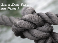 How is Stress Bad for your Health ?