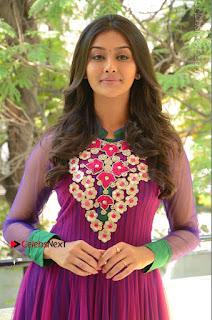 Actress Pooja Jhaveri Latest Stills in Purple Salwar Kameezt at Dwaraka Success Meet  0031.JPG